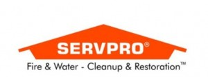 servpro woodland hills mold removal specialist